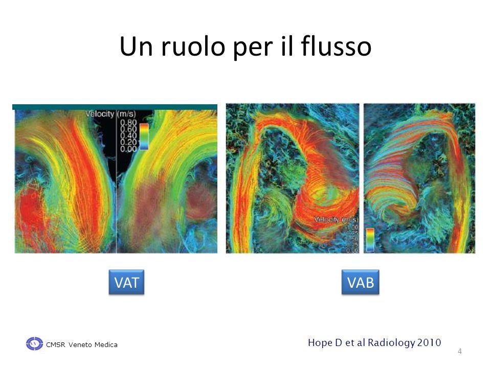 Un ruolo per il flusso 4 VATVAB CMSR Veneto Medica Hope D et al Radiology 2010