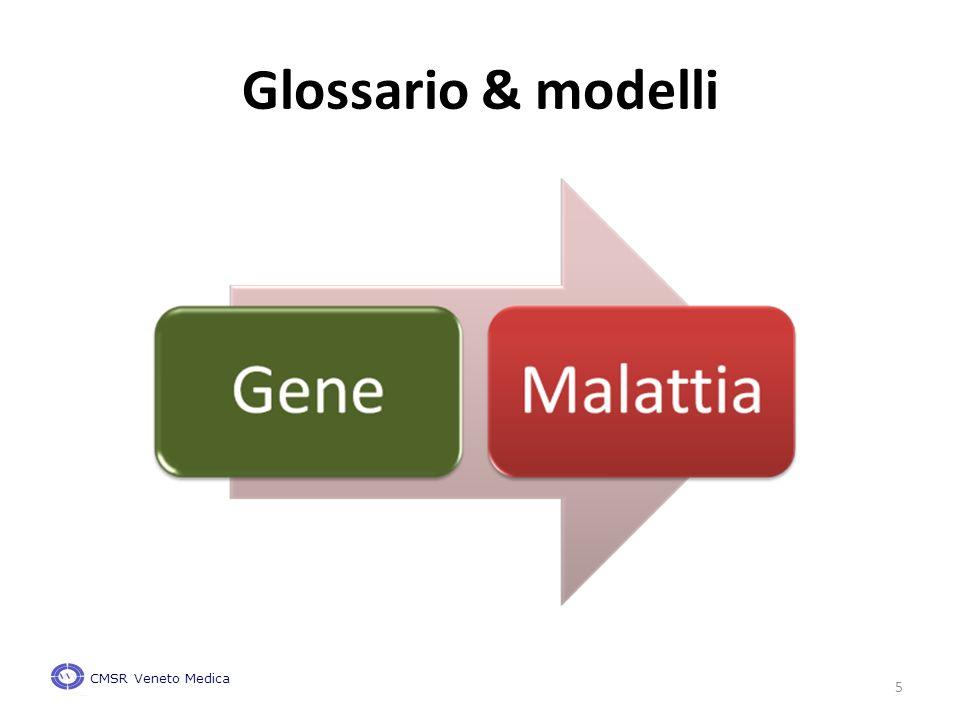5 Glossario & modelli CMSR Veneto Medica