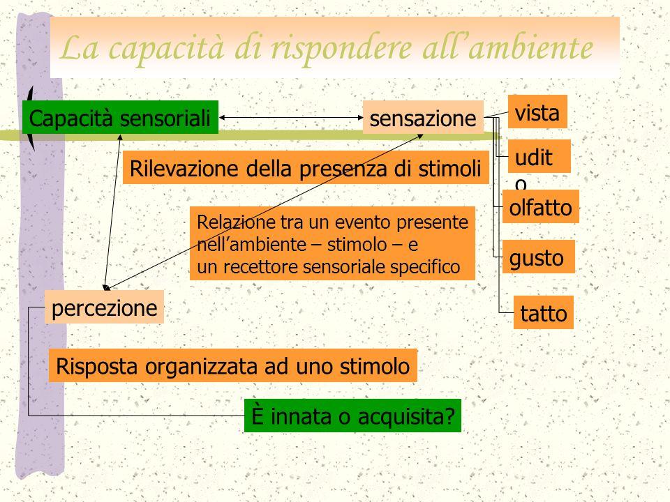 Il sincretismo infantile.Carenza di organizzazione flessibile e articolata del campo percettivo.