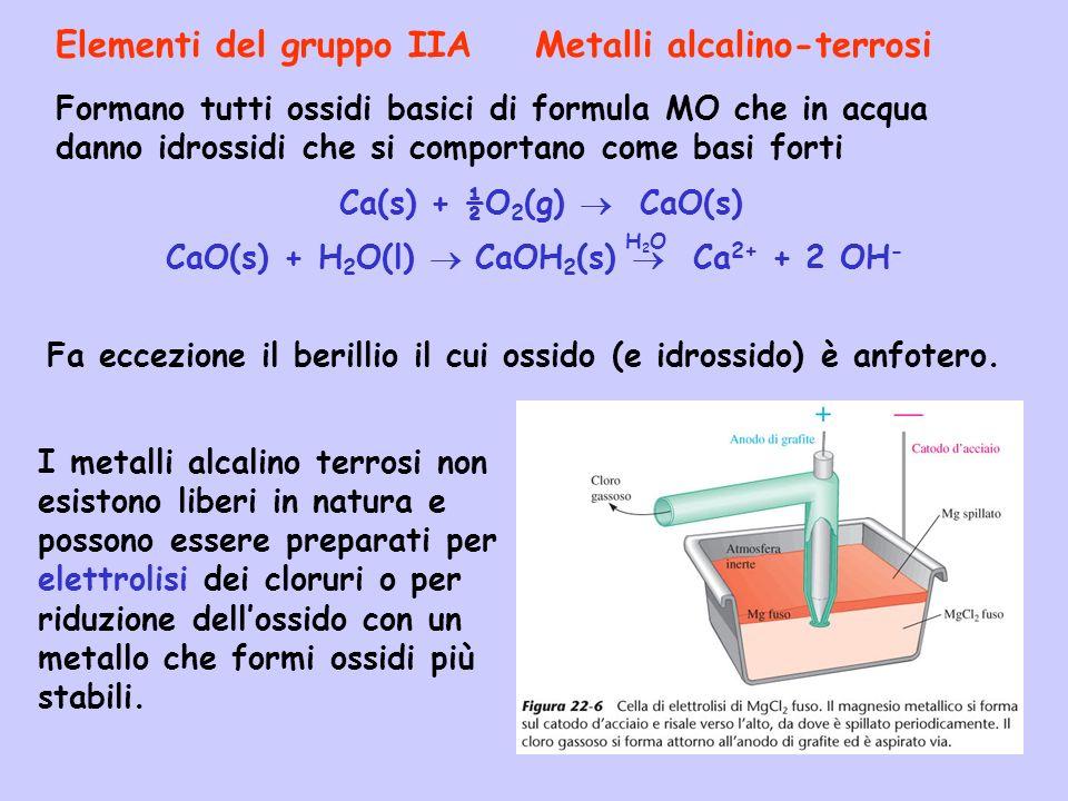 Elementi del gruppo IIA Metalli alcalino-terrosi Fa eccezione il berillio il cui ossido (e idrossido) è anfotero. Formano tutti ossidi basici di formu
