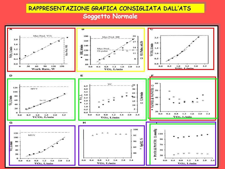 RAPPRESENTAZIONE GRAFICA CONSIGLIATA DALLATS Soggetto Normale