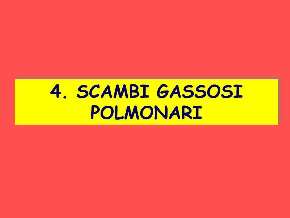 4. SCAMBI GASSOSI POLMONARI