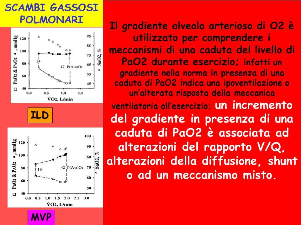 SCAMBI GASSOSI POLMONARI MVP ILD Il gradiente alveolo arterioso di O2 è utilizzato per comprendere i meccanismi di una caduta del livello di PaO2 dura