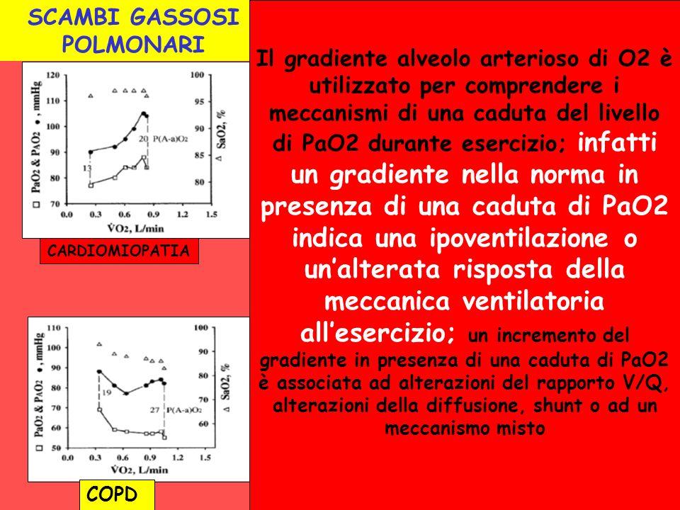 SCAMBI GASSOSI POLMONARI COPD CARDIOMIOPATIA Il gradiente alveolo arterioso di O2 è utilizzato per comprendere i meccanismi di una caduta del livello