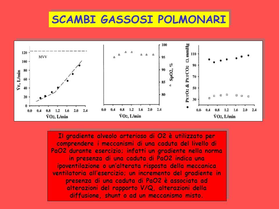 NORMALE SCAMBI GASSOSI POLMONARI Il gradiente alveolo arterioso di O2 è utilizzato per comprendere i meccanismi di una caduta del livello di PaO2 dura