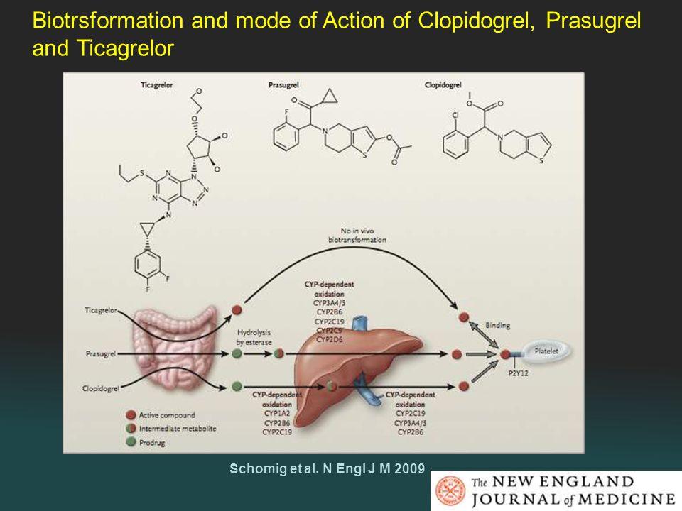 Schomig et al. N Engl J M 2009 Biotrsformation and mode of Action of Clopidogrel, Prasugrel and Ticagrelor