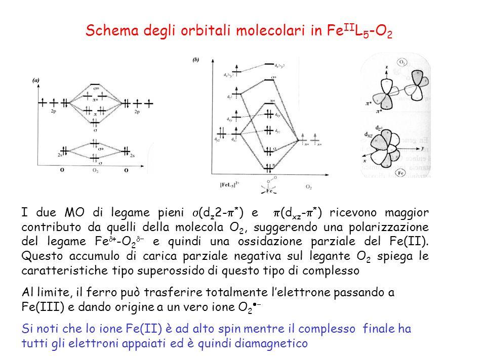 Schema degli orbitali molecolari in Fe II L 5 -O 2 I due MO di legame pieni (d z 2- * ) e (d xz - * ) ricevono maggior contributo da quelli della molecola O 2, suggerendo una polarizzazione del legame Fe + -O 2 e quindi una ossidazione parziale del Fe(II).
