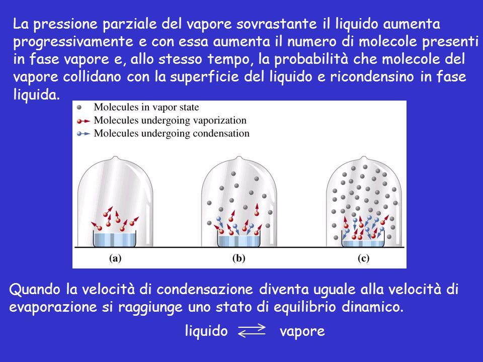 Tensione di vapore La tensione di vapore di un liquido dipende dalle forze intermolecolari: la facilità con cui una molecola abbandona il liquido è determinata dalla forza con cui è attratta dalle altre molecole.