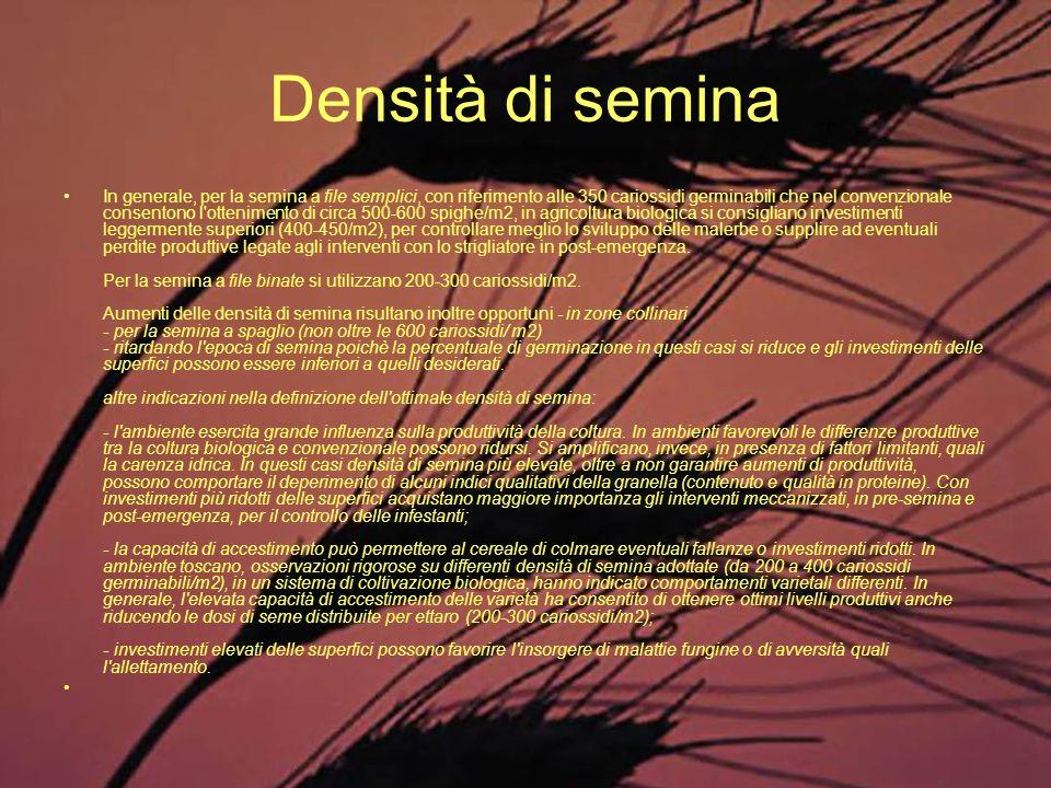 Densità di semina In generale, per la semina a file semplici, con riferimento alle 350 cariossidi germinabili che nel convenzionale consentono l'otten