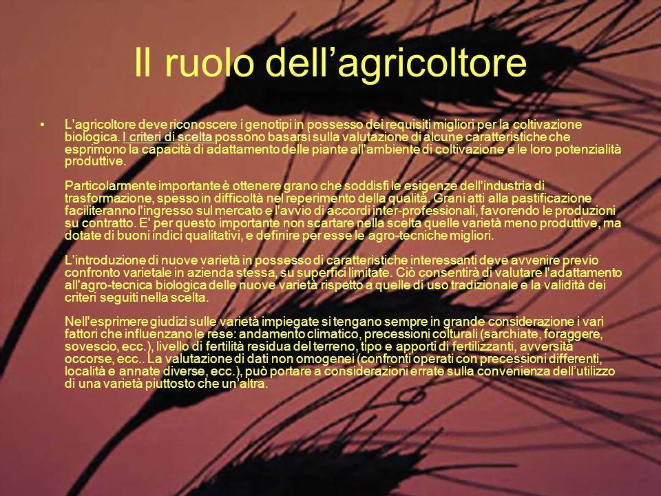 Il ruolo dellagricoltore L'agricoltore deve riconoscere i genotipi in possesso dei requisiti migliori per la coltivazione biologica. I criteri di scel