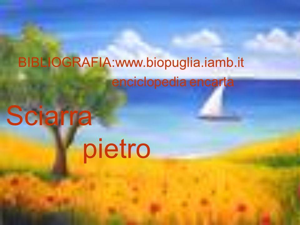 BIBLIOGRAFIA:www.biopuglia.iamb.it enciclopedia encarta Sciarra pietro