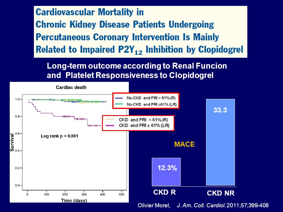 CKD NR 33.3 CKD R 12.3% Long-term outcome according to Renal Funcion and Platelet Responsiveness to Clopidogrel Olivier Morel,J. Am. Coll. Cardiol. 20