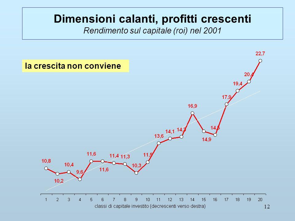 12 Dimensioni calanti, profitti crescenti Rendimento sul capitale (roi) nel 2001 la crescita non conviene