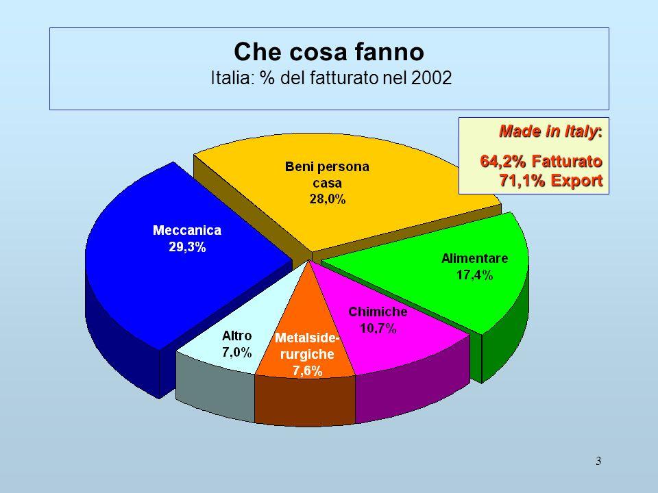 3 Che cosa fanno Italia: % del fatturato nel 2002 Made in Italy: 64,2% Fatturato 71,1% Export