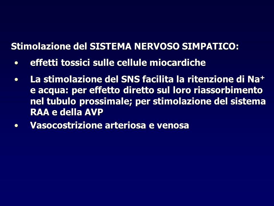 Stimolazione del SISTEMA NERVOSO SIMPATICO: Stimolazione del SISTEMA NERVOSO SIMPATICO: effetti tossici sulle cellule miocardicheeffetti tossici sulle