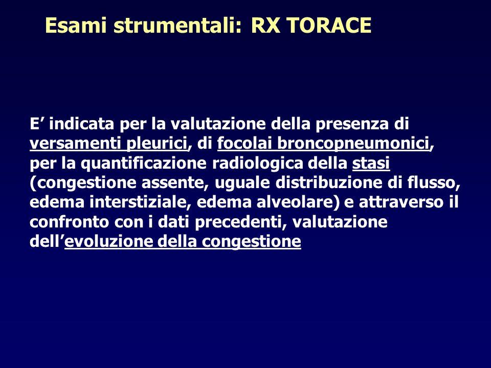 Esami strumentali: RX TORACE E indicata per la valutazione della presenza di versamenti pleurici, di focolai broncopneumonici, per la quantificazione