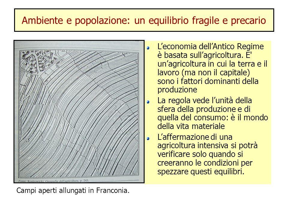 Ambiente e popolazione: un equilibrio fragile e precario Leconomia dellAntico Regime è basata sullagricoltura. E' unagricoltura in cui la terra e il l