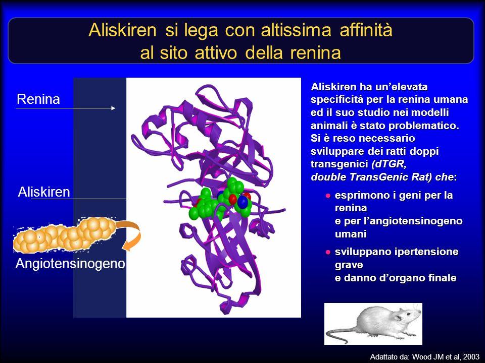 Angiotensinogeno Aliskiren si lega con altissima affinità al sito attivo della renina Renina Aliskiren Adattato da: Wood JM et al, 2003 Aliskiren ha u