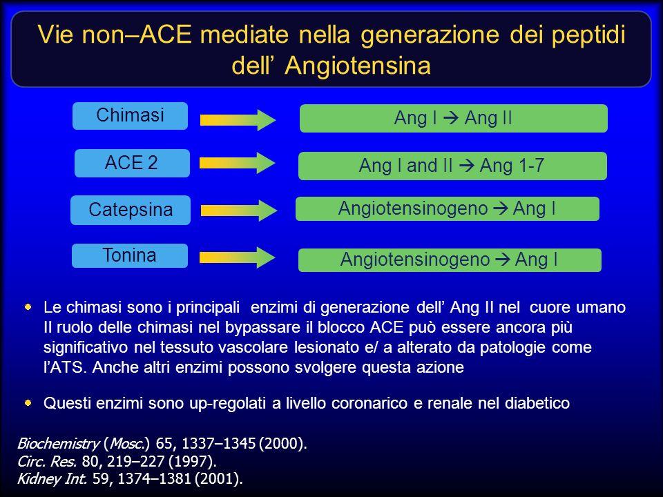 Vie non–ACE mediate nella generazione dei peptidi dell Angiotensina Le chimasi sono i principali enzimi di generazione dell Ang II nel cuore umano Il