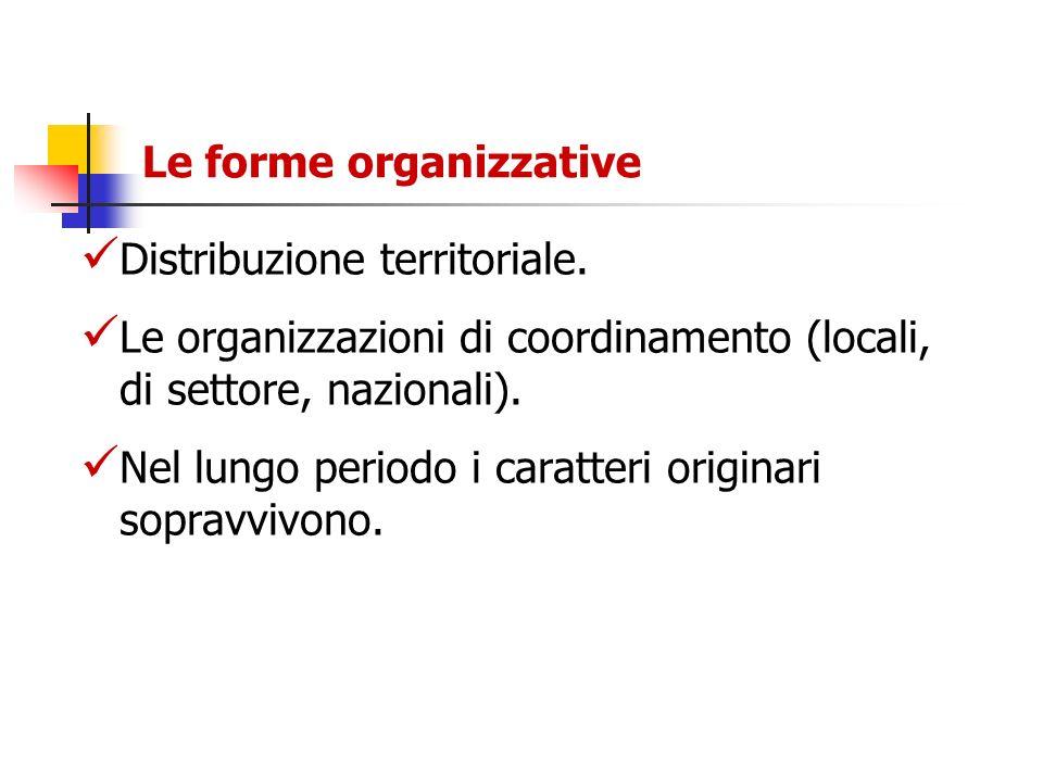 Le forme organizzative Distribuzione territoriale. Le organizzazioni di coordinamento (locali, di settore, nazionali). Nel lungo periodo i caratteri o