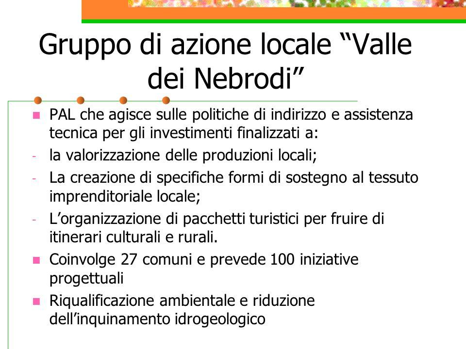 Gruppo di azione locale Valle dei Nebrodi PAL che agisce sulle politiche di indirizzo e assistenza tecnica per gli investimenti finalizzati a: - la va