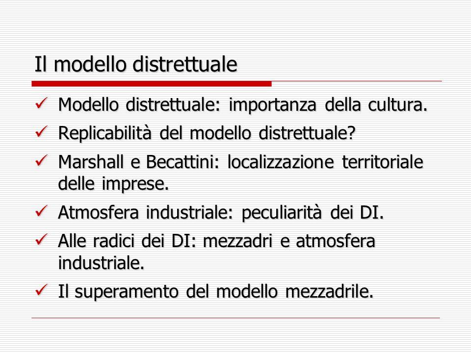 Il modello distrettuale Modello distrettuale: importanza della cultura. Modello distrettuale: importanza della cultura. Replicabilità del modello dist
