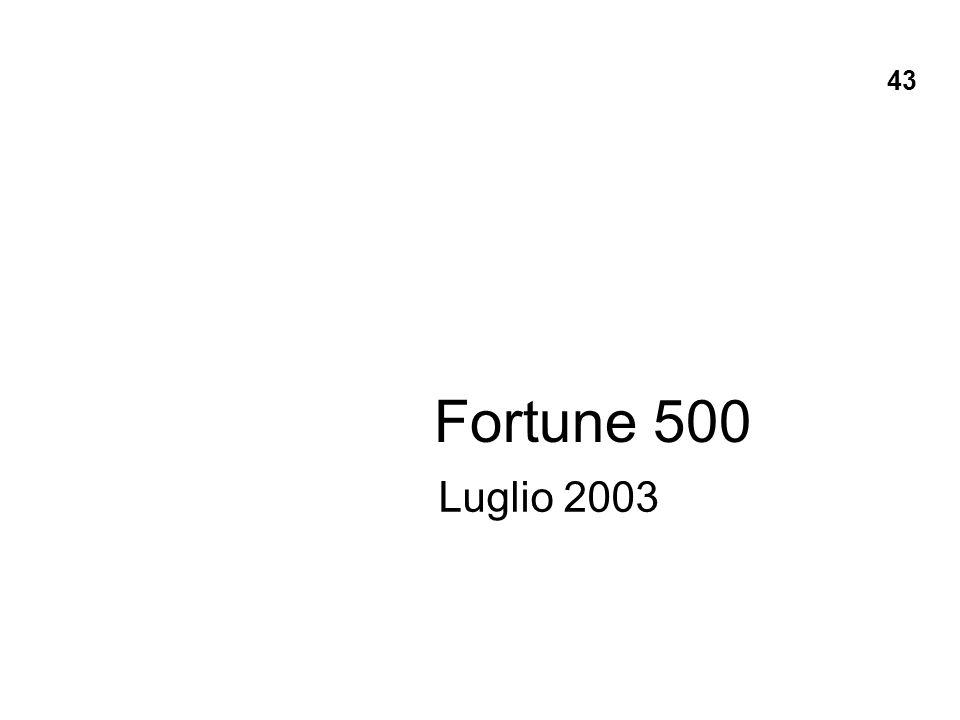 Fortune 500 Luglio 2003 43