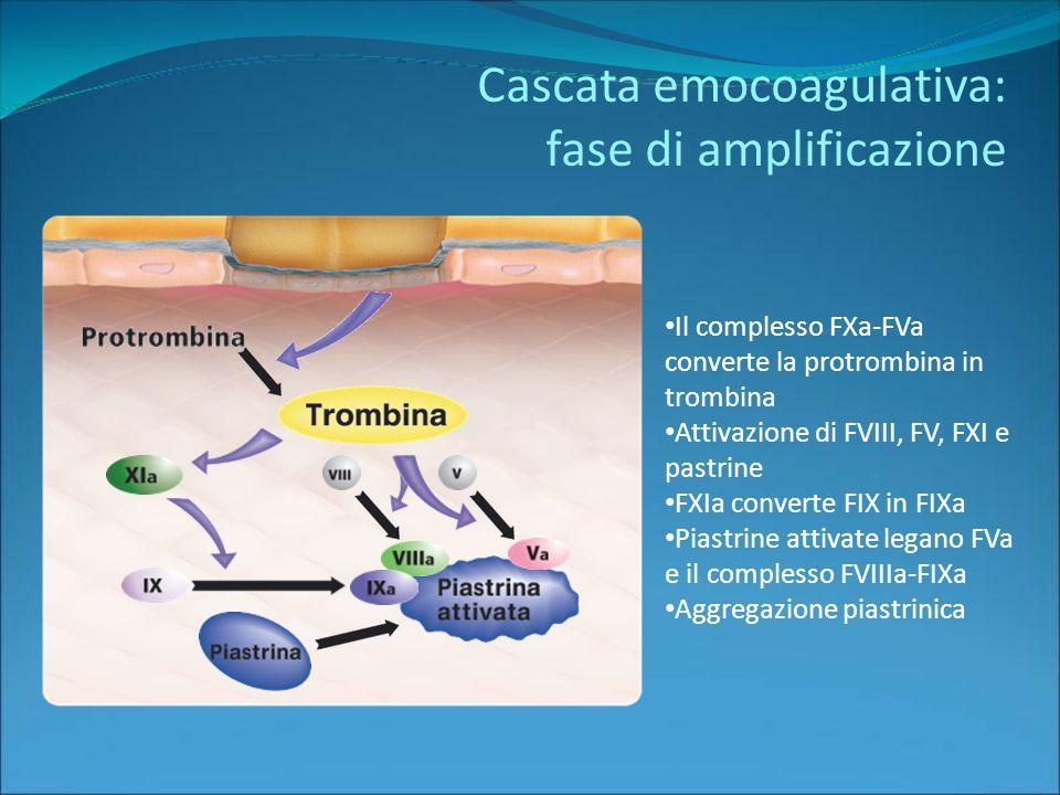 Cascata emocoagulativa: fase di amplificazione Il complesso FXa-FVa converte la protrombina in trombina Attivazione di FVIII, FV, FXI e pastrine FXIa converte FIX in FIXa Piastrine attivate legano FVa e il complesso FVIIIa-FIXa Aggregazione piastrinica