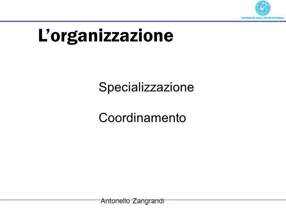 Antonello Zangrandi Lorganizzazione Specializzazione Coordinamento
