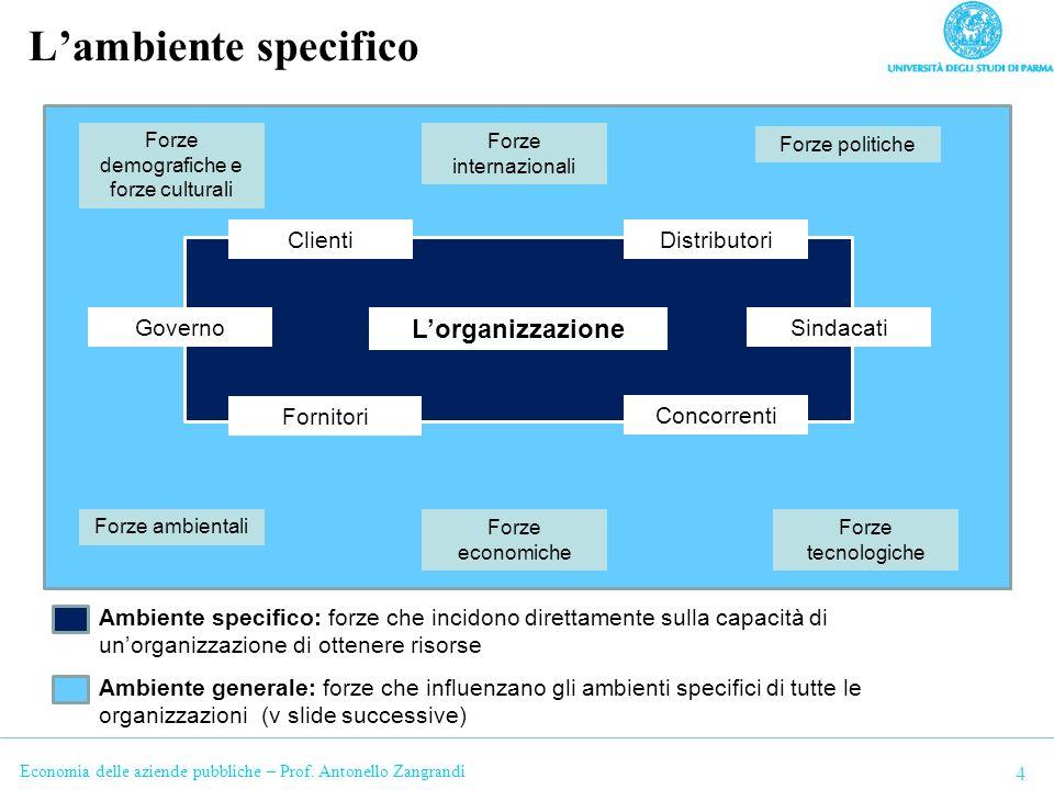 Economia delle aziende pubbliche – Prof.