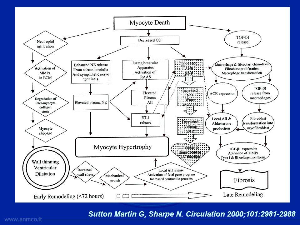 Sutton Martin G, Sharpe N. Circulation 2000;101:2981-2988
