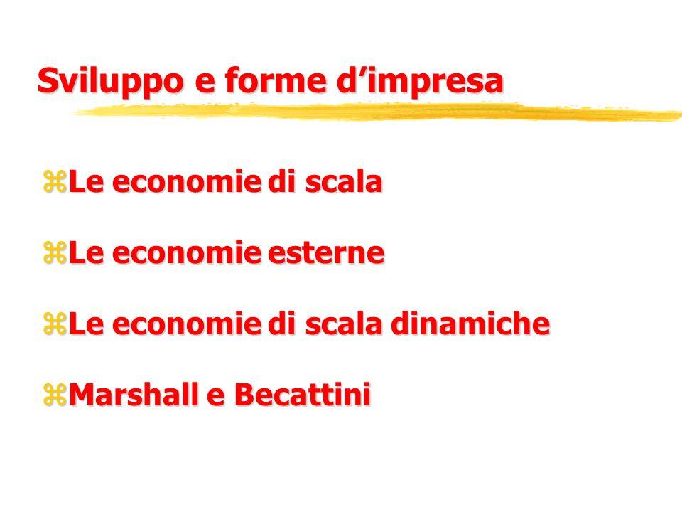 Sviluppo e forme dimpresa zLe economie di scala zLe economie esterne zLe economie di scala dinamiche zMarshall e Becattini