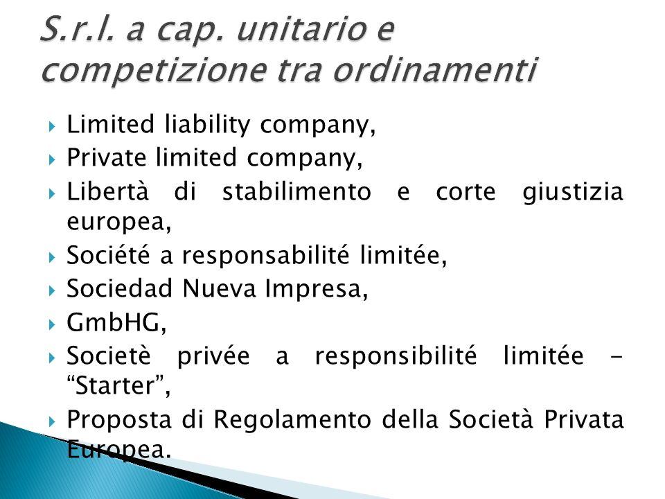 Limited liability company, Private limited company, Libertà di stabilimento e corte giustizia europea, Société a responsabilité limitée, Sociedad Nuev