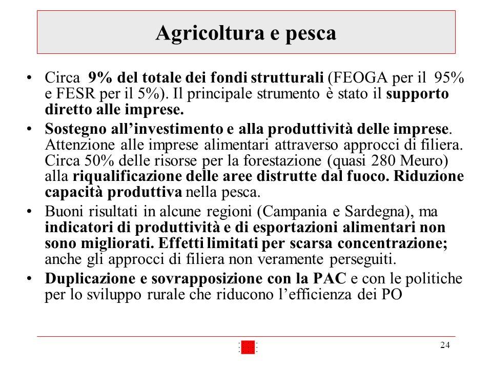 24 Agricoltura e pesca Circa 9% del totale dei fondi strutturali (FEOGA per il 95% e FESR per il 5%). Il principale strumento è stato il supporto dire