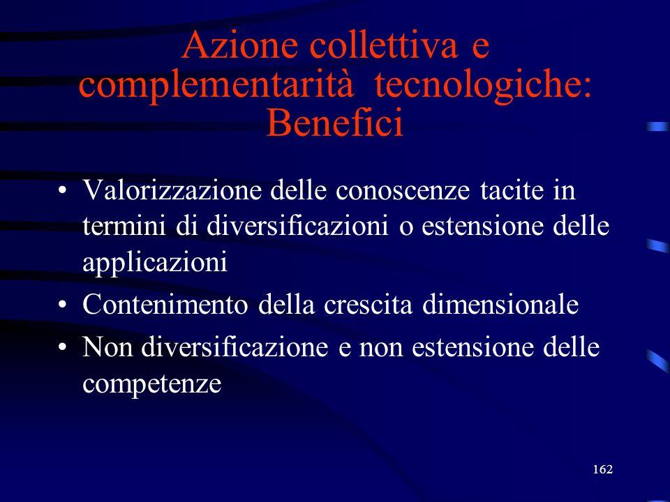 162 Azione collettiva e complementarità tecnologiche: Benefici Valorizzazione delle conoscenze tacite in termini di diversificazioni o estensione dell