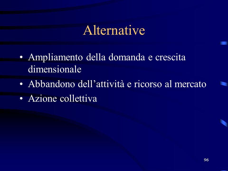 96 Alternative Ampliamento della domanda e crescita dimensionale Abbandono dellattività e ricorso al mercato Azione collettiva