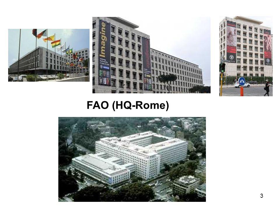 3 FAO (HQ-Rome)