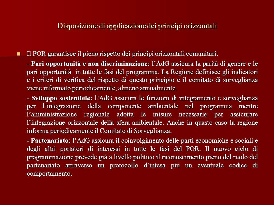 Disposizione di applicazione dei principi orizzontali Il POR garantisce il pieno rispetto dei principi orizzontali comunitari: Il POR garantisce il pi