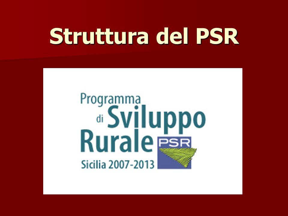 Struttura del PSR