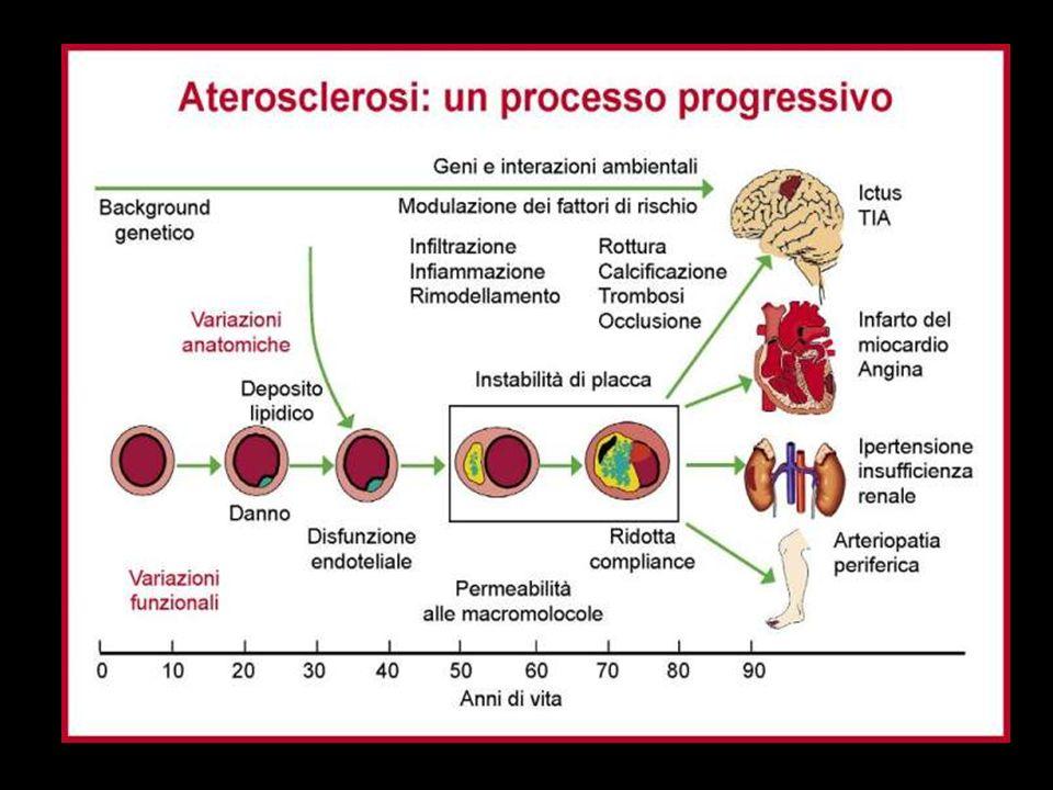 Rosuvastatina-Atorvastatina: percentuale di pazienti che raggiungono il target per il colesterolo LDL raccomandato dalle Linee Guida a 52 settimane Studio Stellar Olsson AG, Am Heart J 2002;144:1044-1051 Raggiunto a 20 mg Raggiunto a 80 mg Raggiunto a 10 mgRaggiunto> a 40 mg Insuccessi Atorvastatina 87,1% Rosuvastatina +2,4% +5,2% +11,3% +18,1% +82,1% +58,.6% 96,2% 20,8 mg (n=140) 13,4 mg (n=134) Dose media Pazienti a target per colesterolo LDL(%) 0 100 20 40 60 80