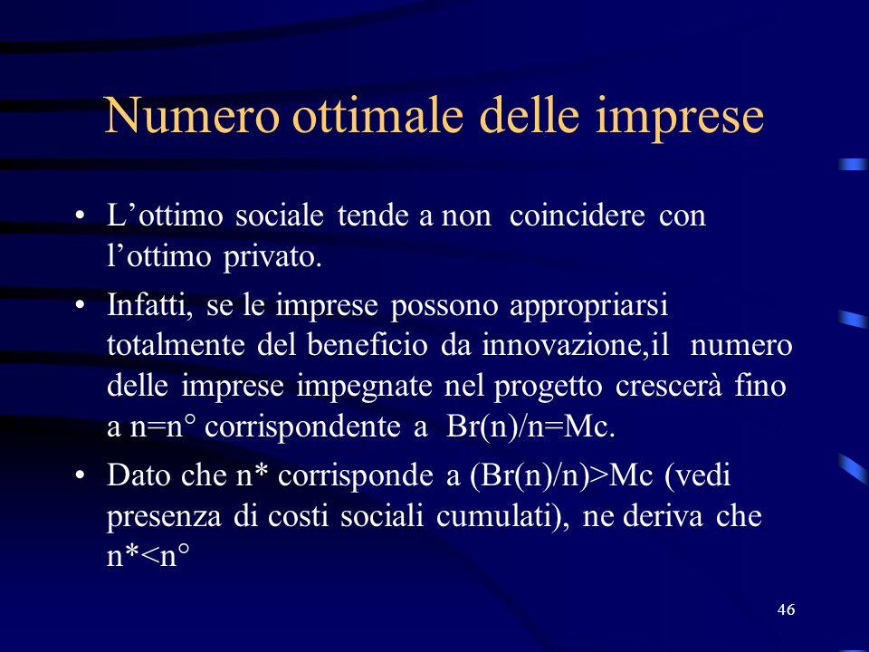 46 Numero ottimale delle imprese Lottimo sociale tende a non coincidere con lottimo privato.