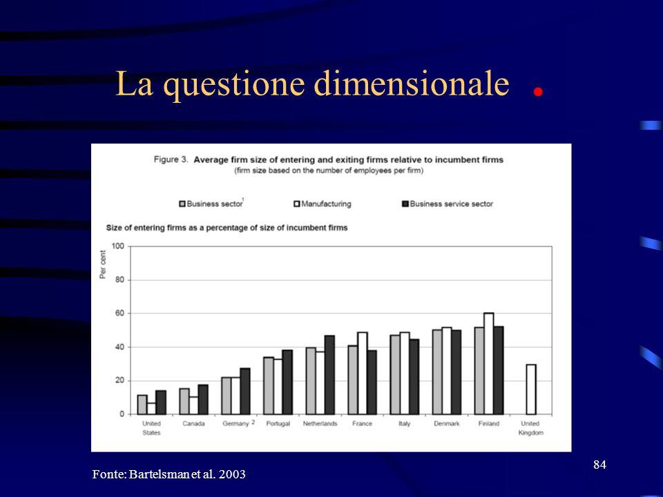 84 La questione dimensionale. Fonte: Bartelsman et al. 2003