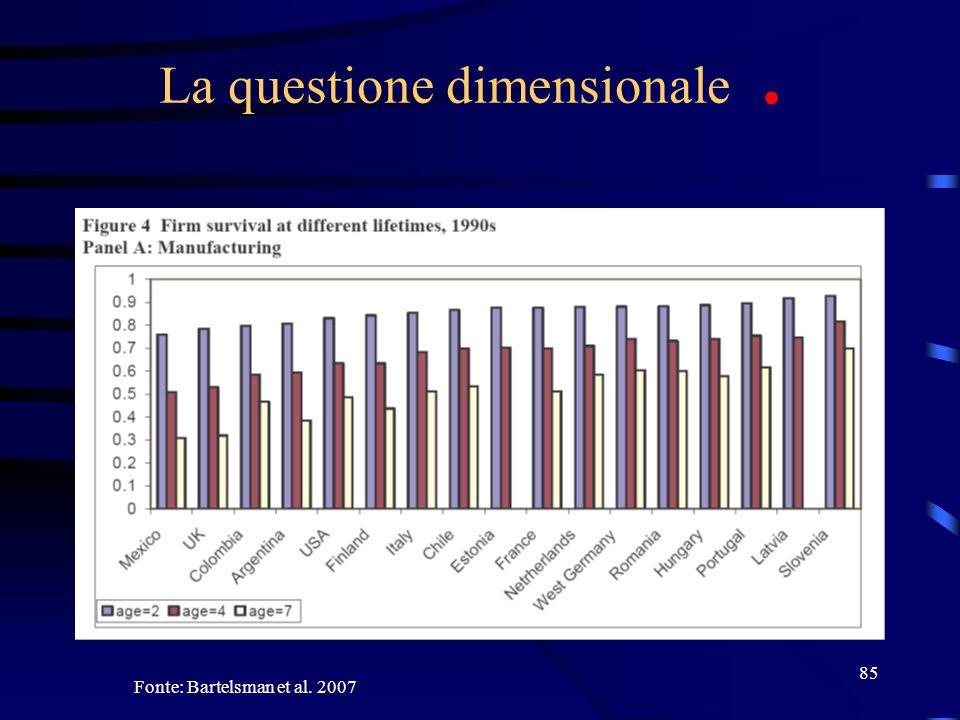85 La questione dimensionale. Fonte: Bartelsman et al. 2007