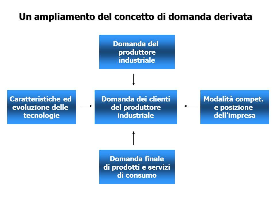 Un ampliamento del concetto di domanda derivata Domanda dei clienti del produttore industriale Caratteristiche ed evoluzione delle tecnologie Modalità