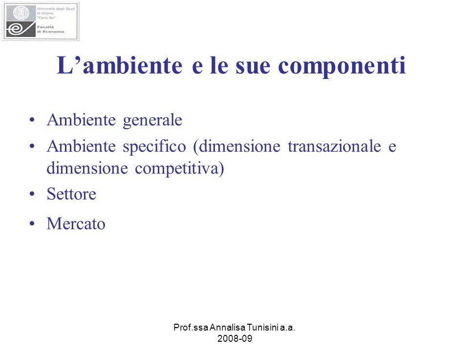 Prof.ssa Annalisa Tunisini a.a. 2008-09 Lambiente e le sue componenti Ambiente generale Ambiente specifico (dimensione transazionale e dimensione comp