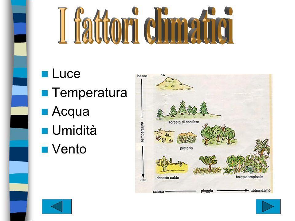 Bioma marino Bioma dacqua dolce Bioma terrestre