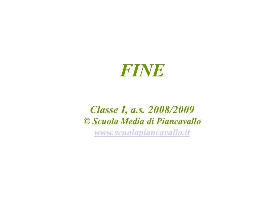 FINE Classe I, a.s. 2008/2009 © Scuola Media di Piancavallo www.scuolapiancavallo.it