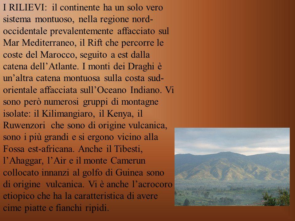 I RILIEVI: il continente ha un solo vero sistema montuoso, nella regione nord- occidentale prevalentemente affacciato sul Mar Mediterraneo, il Rift ch