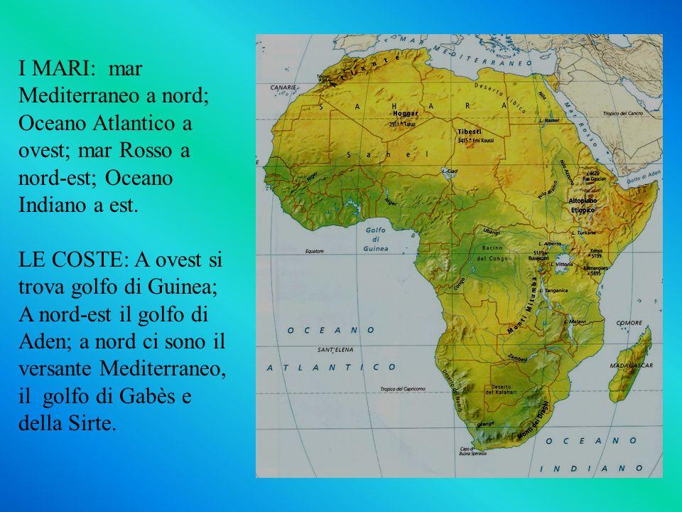 I MARI: mar Mediterraneo a nord; Oceano Atlantico a ovest; mar Rosso a nord-est; Oceano Indiano a est. LE COSTE: A ovest si trova golfo di Guinea; A n