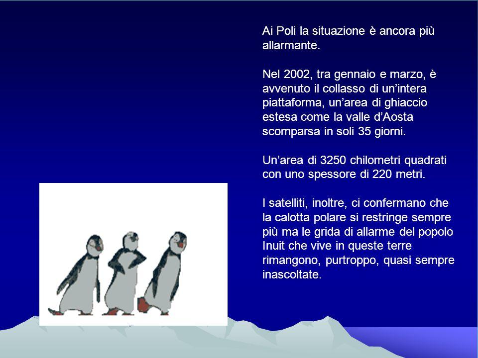 Ai Poli la situazione è ancora più allarmante. Nel 2002, tra gennaio e marzo, è avvenuto il collasso di unintera piattaforma, unarea di ghiaccio estes